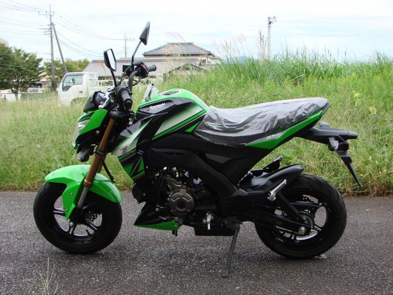2016 Kawasaki Z125 Pro Krt Edition Rmd Motors